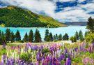 Озеро Саурис в Италии
